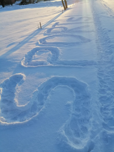 Sniega aktivitātes