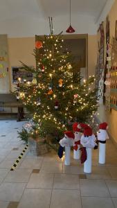 Ziemassvētkus gaidot